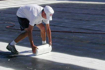 Roof Mds Single Ply Coating System